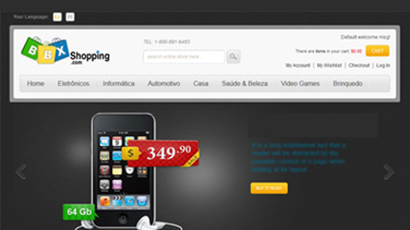 Magento eCommerce Web Development